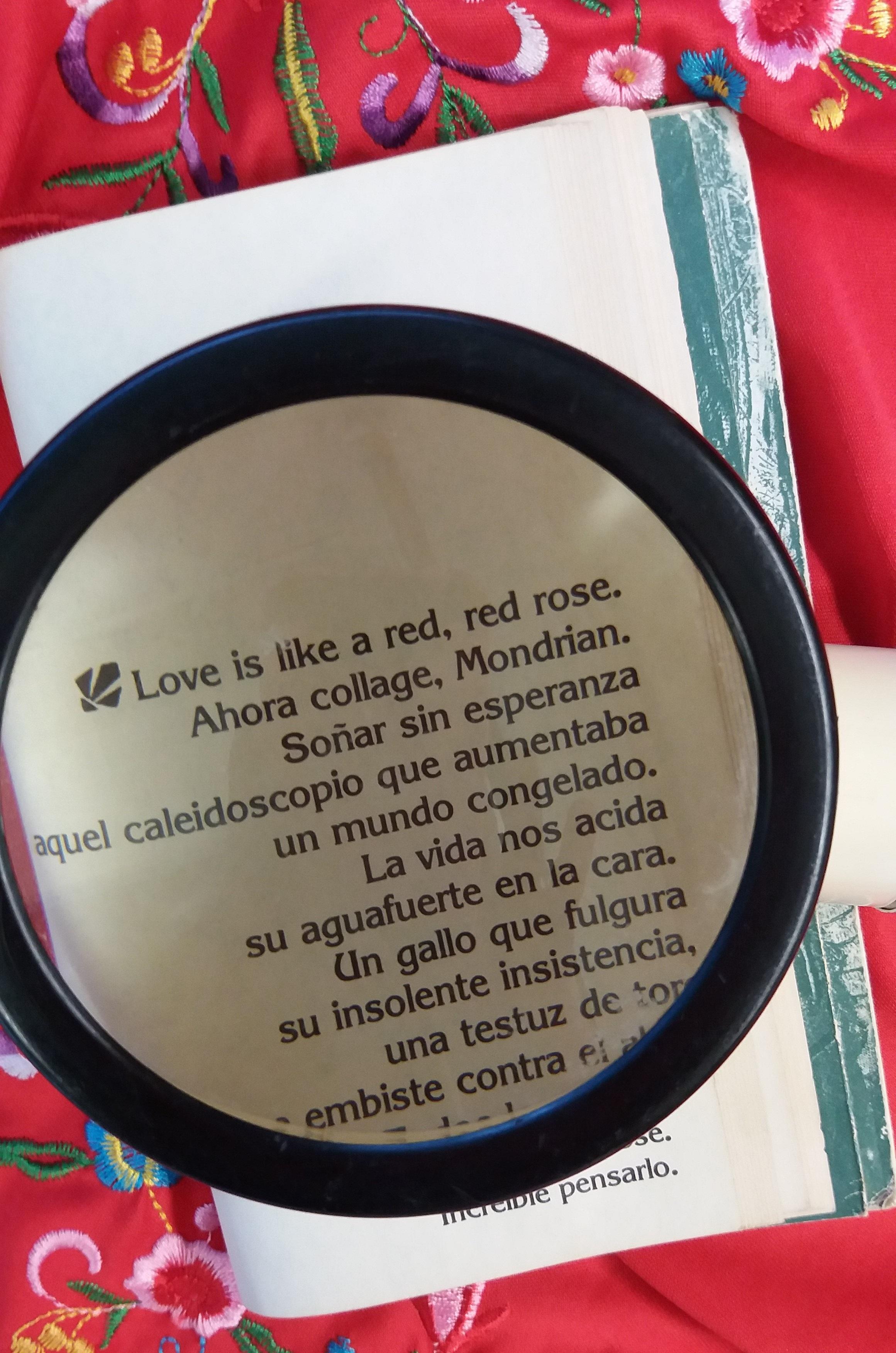 poema-laura-gallego-con-manta